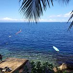 View from the shore in Freedive +