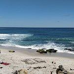 Foto de Windansea Beach