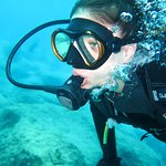 Billede af SubAQUA Diving Center