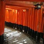 ภาพถ่ายของ ศาลเจ้าฟูชิมิ อินาริ