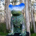 Woody The Forestry Koala in the Forest