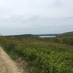 Beech Hill Reserve