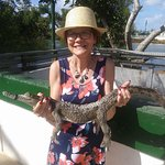ferme de crocodile