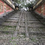 Photo de Vizcaya Museum and Gardens