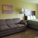 Queen bed and sleeper sofa in family suite