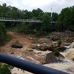 Falls Park on the Reedy Photo