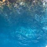 Valokuva: Croisières Grand Bleu