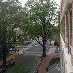 Вашингтон- город-сад (вид с балкона)