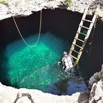 Cenote Calavera. Find us on instagram @mexidivers
