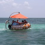 Octopus Aruba Aqua Donut Boat Fun Sun Friends Family Lunch Caribbean Blue Crystal Clear Water