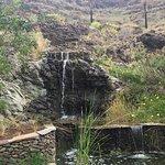Fotografia de Palmitos Park