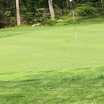 Cape Neddick Golf Course의 사진