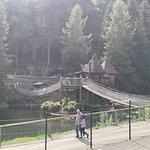 صورة فوتوغرافية لـ Steinwasen Park