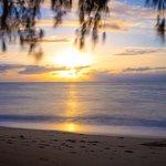 Palm Cove Beach ภาพถ่าย