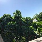 Bilde fra Panicuason Hot Spring Resort