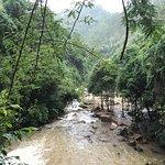 ภาพถ่ายของ Datanla Falls