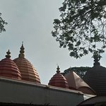 The lovely domes of the temple!