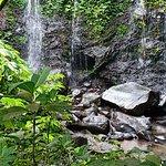 Foto de Bali Eco Stay Bungalows