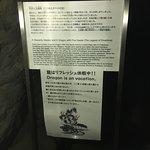 Enoshima Iwaya Caves의 사진