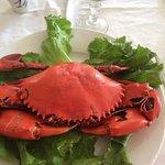 Le crabe entier à décortiquer