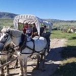 ภาพถ่ายของ Historic Trails West - Day Tours