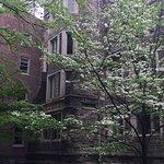 ภาพถ่ายของ Princeton University