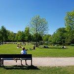 صورة فوتوغرافية لـ حديقة فونديل بارك