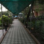 Walk way from the room to reception