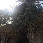 Πάρκο Guell Φωτογραφία