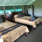 Tent 21 with twin beds