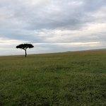 The vastness of the Masai Mara