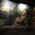 Foto de Museum of the Cherokee Indian