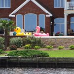 Loved the pool floats