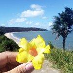 Carro Quebrado Beach Photo
