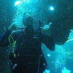 Lahaina Divers Foto