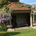 The wisteria garden was in full boom.