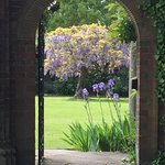 Peeping through a gate into garden where wisterias lined the walls .