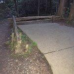 Foto de Sugarlands Valley Nature Trail