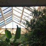Atrium where breakfast is served