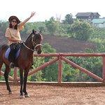 Bilde fra Inle Horse Club Nyaung Shwe