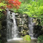 Anderson Japanese Gardens-West Waterfall