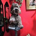 A nice choco dog
