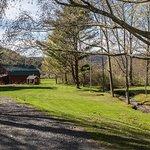 Christmas tree farm grounds & rustic barn