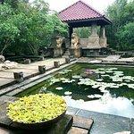 Forest Rock Garden Resort Photo