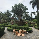 Nong Nooch Tropical Botanical Garden Resmi