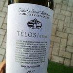 """TELOS"" Garganega & Chardonnay"
