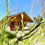 Spring in Livonsaari, at Kuppari-Hanna's Natural Health Spa