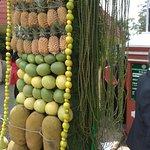 Fruit show @ Sims's Park, Coonoor