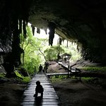 Niah Caves – fotografia