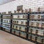 Miner's lamps on shelves